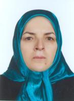 دکتر میرمحمدرضایی